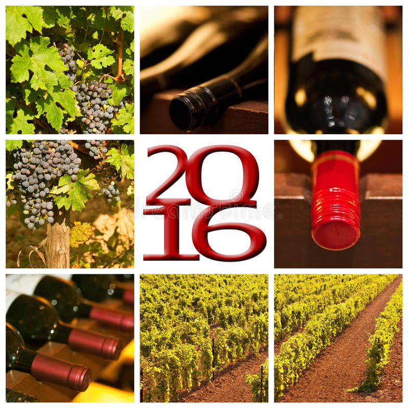 carte de collage de 2016 de vin rouge photos de place image stock