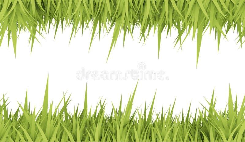 Carte de concept d'herbe verte illustration libre de droits