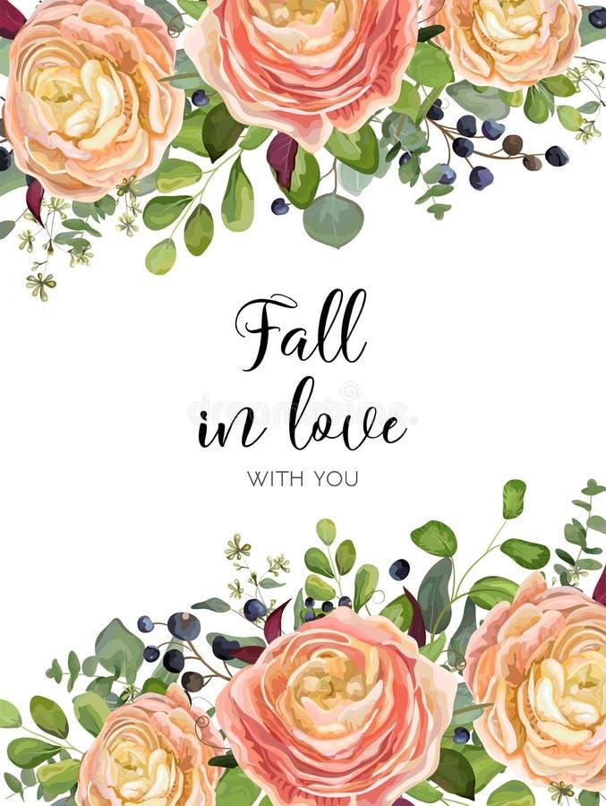 Carte de conception florale de vecteur : rose de jardin, Ranunculus rose la Floride de pêche illustration libre de droits
