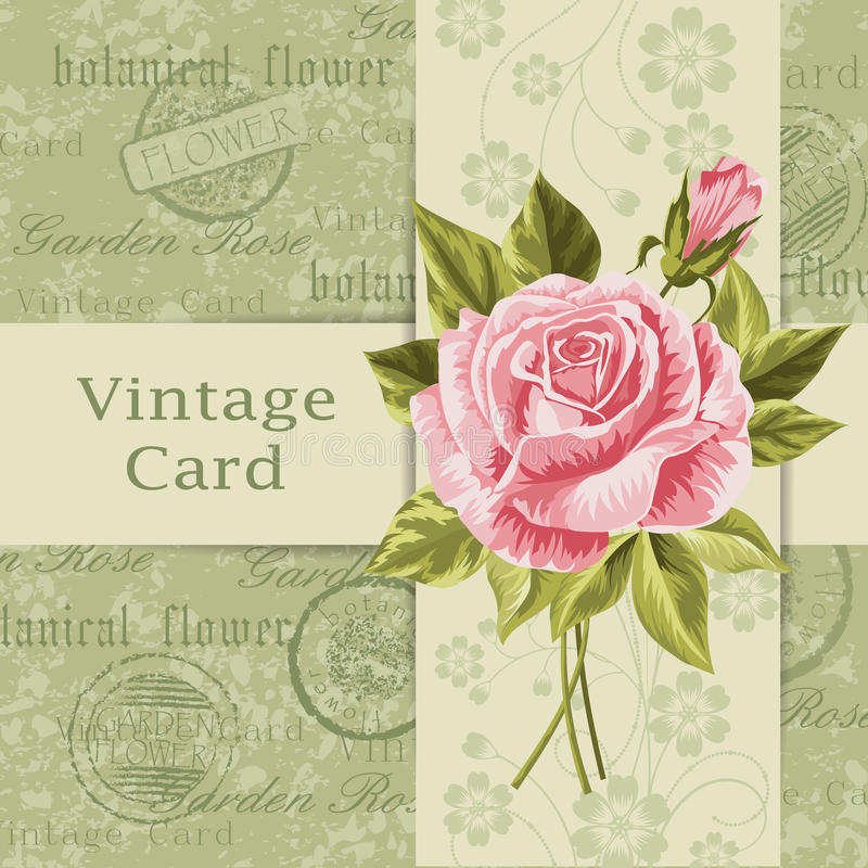 Carte de cru avec des fleurs illustration stock