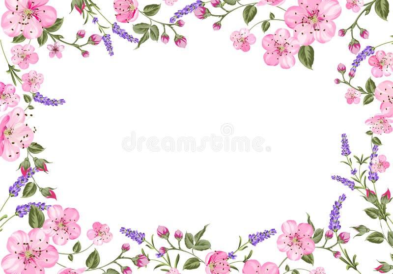 Carte de la Provence de lavande illustration stock