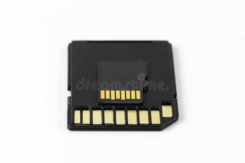 Carte de mémoire de MicroSD sur la carte de mémoire d'écart-type d'isolement sur le backgrou blanc photos libres de droits