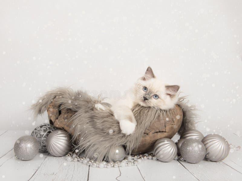 Carte de Noël avec le chaton mignon de poupée de chiffon photo libre de droits