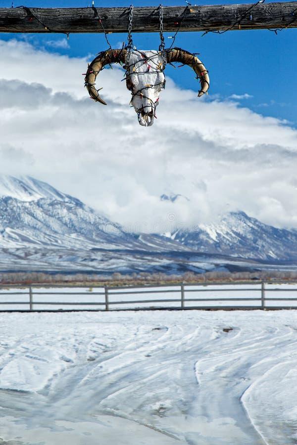 Carte de Noël tirée d'Idaho du nord photos stock