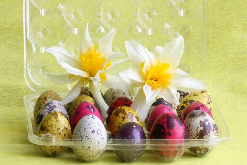Carte de Pâques : oeufs avec des fleurs - images courantes photos stock