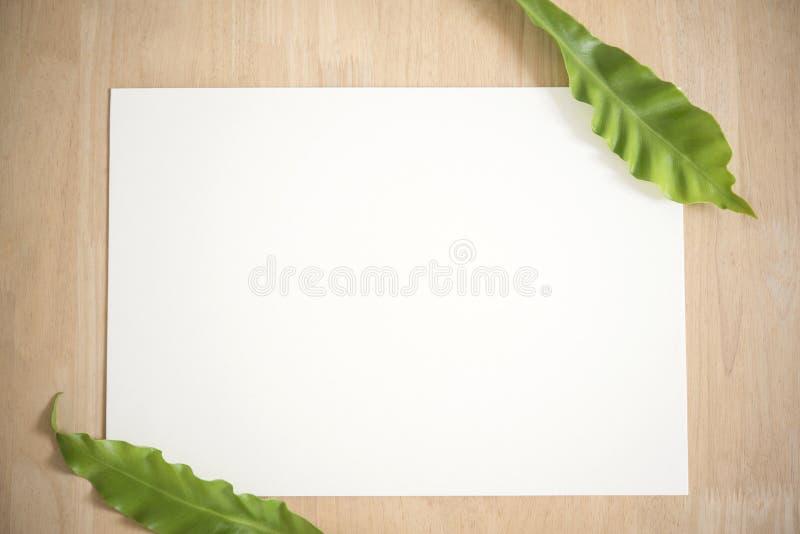 Carte de papier de salutation blanche vide avec la feuille verte pour la maquette photo stock