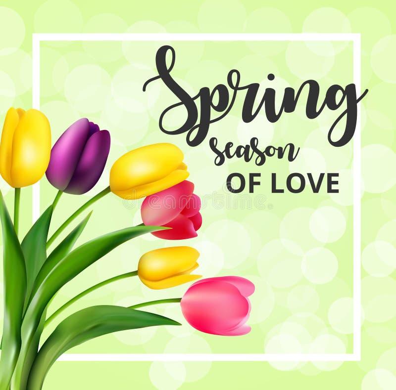 Carte de ressort avec des fleurs de tulipe illustration libre de droits