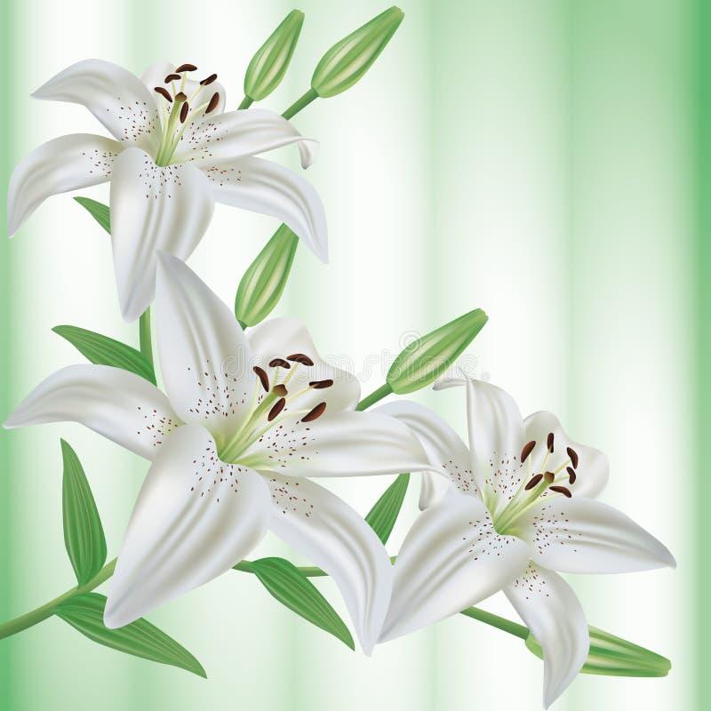 Carte de salutation ou d'invitation avec le bouquet de la fleur illustration stock