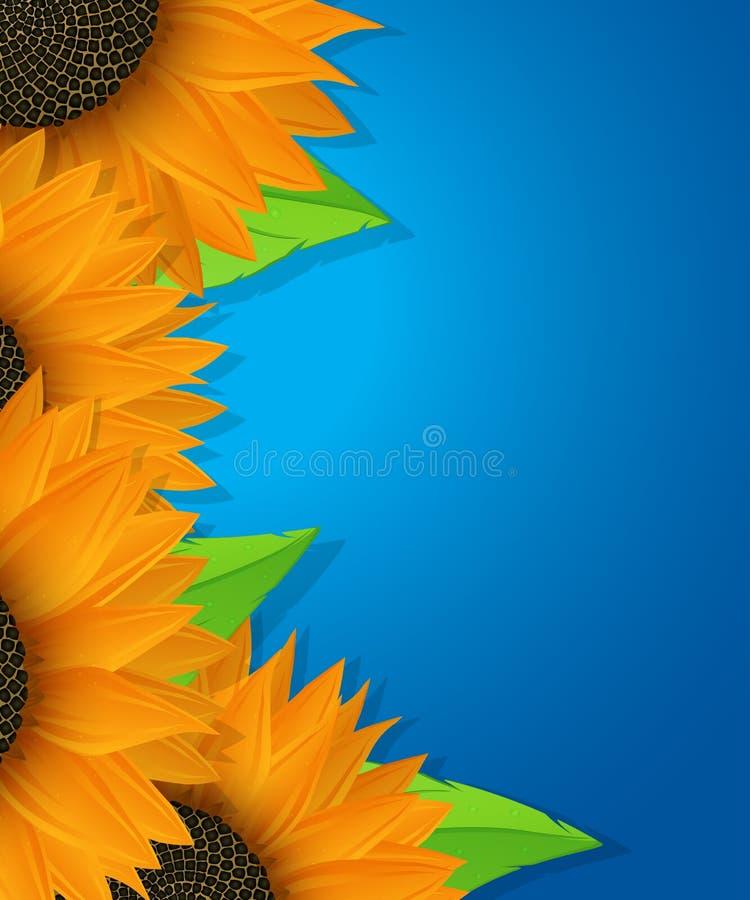 Carte de tournesols et de feuilles illustration stock