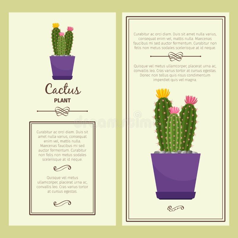 Carte de voeux avec l'usine de cactus illustration stock