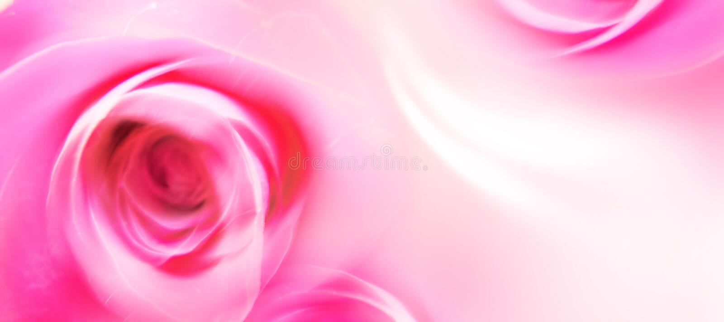 Carte de voeux d'amour - rue Valentine - fleurs - roses photos stock