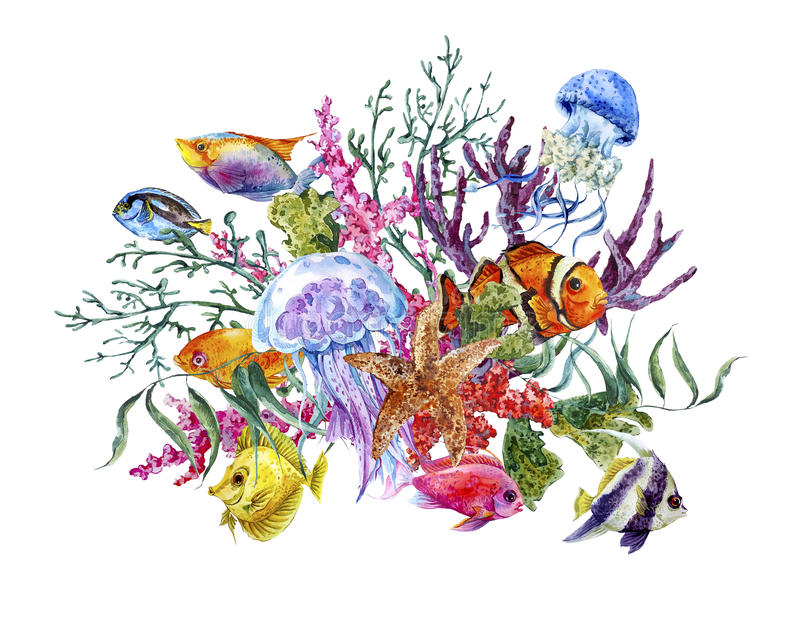 Carte de voeux de vie marine d'aquarelle de vintage d'été illustration libre de droits