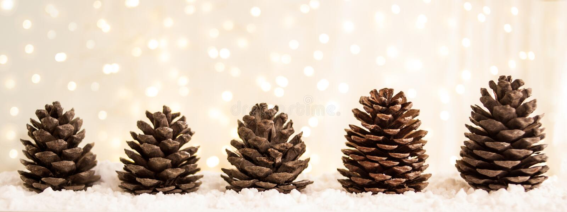 Carte de voeux de Joyeux Noël et de bonne année avec le copie-espace cônes de sapin sur la neige blanche Fond de l'hiver Panorama photographie stock libre de droits
