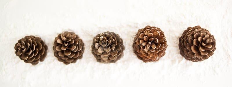 Carte de voeux de Joyeux Noël et de bonne année avec le copie-espace cônes de sapin sur la neige blanche Fond de l'hiver Panorama photos stock