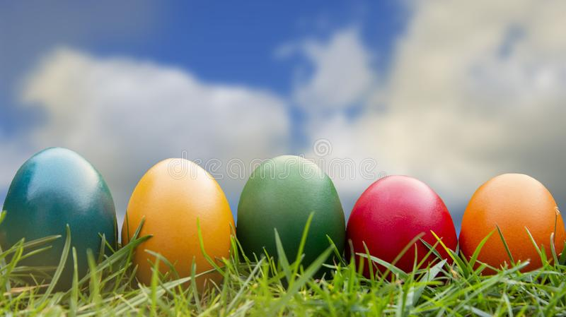 Carte de voeux de Pâques Oeufs de pâques colorés dans l'herbe verte avec le ciel bleu, l'espace de copie Vacances de ressort photos stock