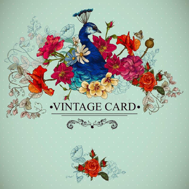 Carte florale de vintage avec le paon illustration stock