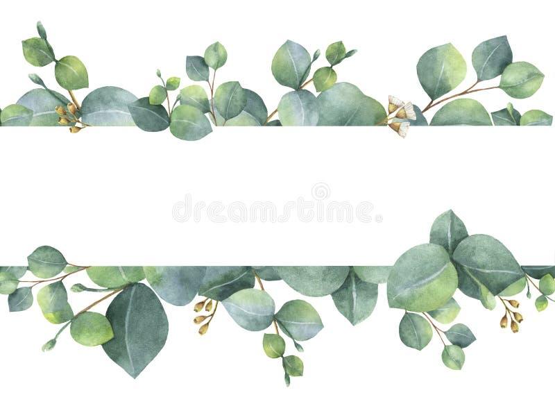 Carte florale verte d'aquarelle avec des feuilles et des branches d'eucalyptus de dollar en argent d'isolement sur le fond blanc illustration stock
