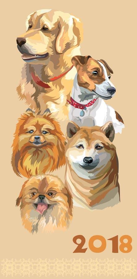 Carte postale avec des chiens de breeds-3 différent illustration stock