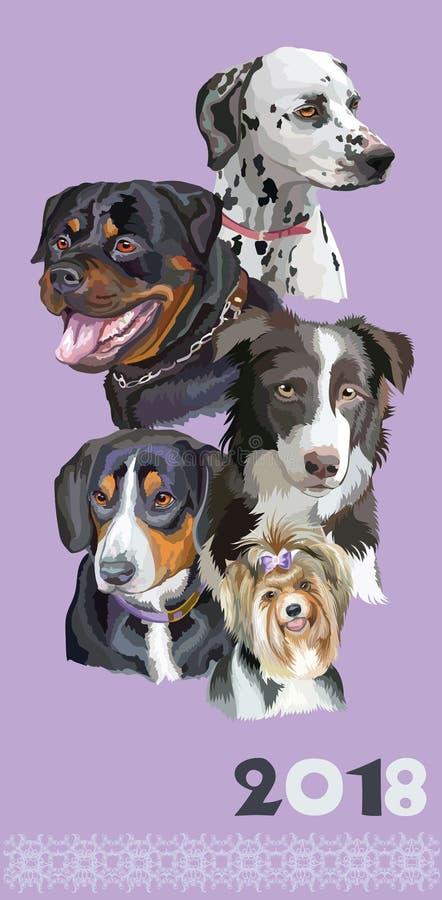 Carte postale avec des chiens de breeds-4 différent illustration stock