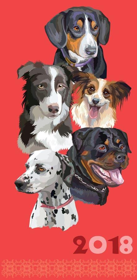 Carte postale avec des chiens de breeds-5 différent illustration stock