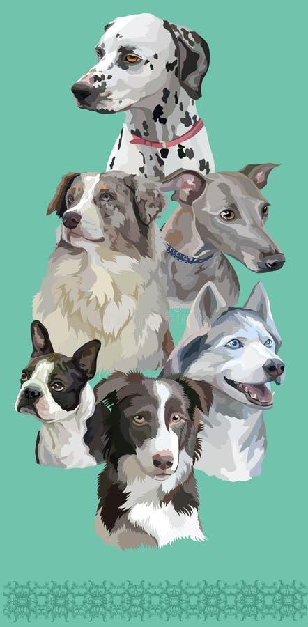 Carte postale avec des chiens de breeds-6 différent illustration de vecteur