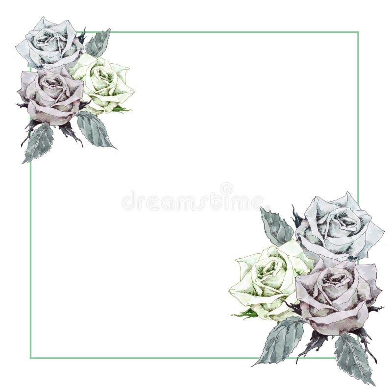 Carte postale avec un cadre carré, dans lequel il y a trois fleurs roses dans la gauche et les coins inférieurs droits supérieurs illustration stock