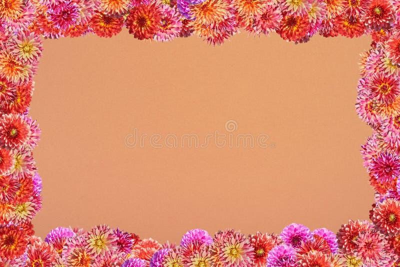 Carte postale avec un cadre des fleurs sur un fond d'orange épaisse images stock