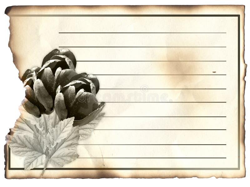 Carte postale blanc pour la condoléance, photographie stock libre de droits