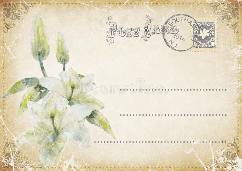 Carte postale grunge de vintage avec des fleurs Illustration illustration de vecteur