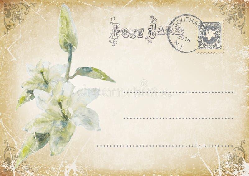 carte postale grunge de vintage avec la fleur Illustration illustration libre de droits