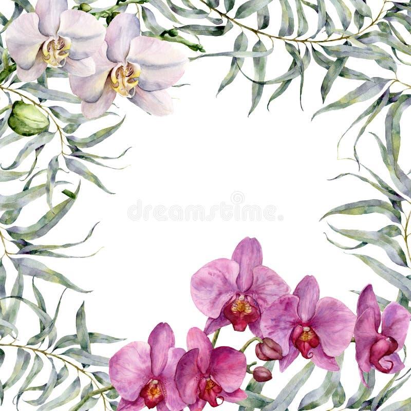 Carte tropicale d'aquarelle avec les orchidées et l'eucalyptus blancs et roses Illustration florale peinte à la main avec l'eucal illustration libre de droits