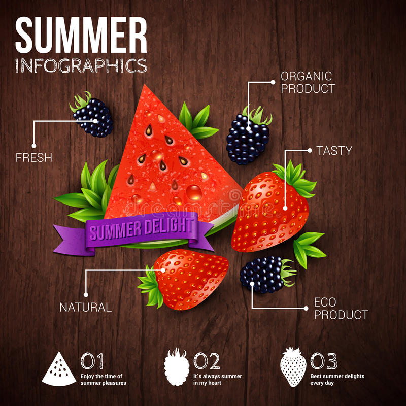 Cartel abstracto del infographics del verano libre illustration