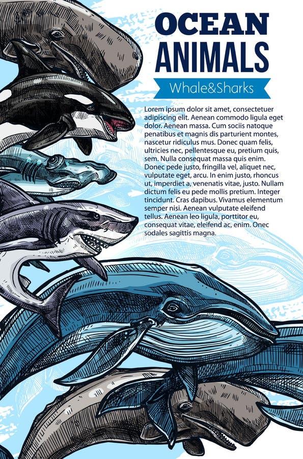 Cartel animal del bosquejo del océano de la ballena y del tiburón stock de ilustración