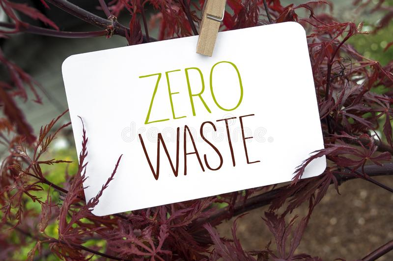 Cartel blanco con mensaje de cero desperdicio con maiz japonés imagen de archivo