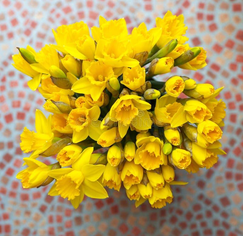 Cartel casero - primavera gloriosa con los narcisos imagen de archivo libre de regalías