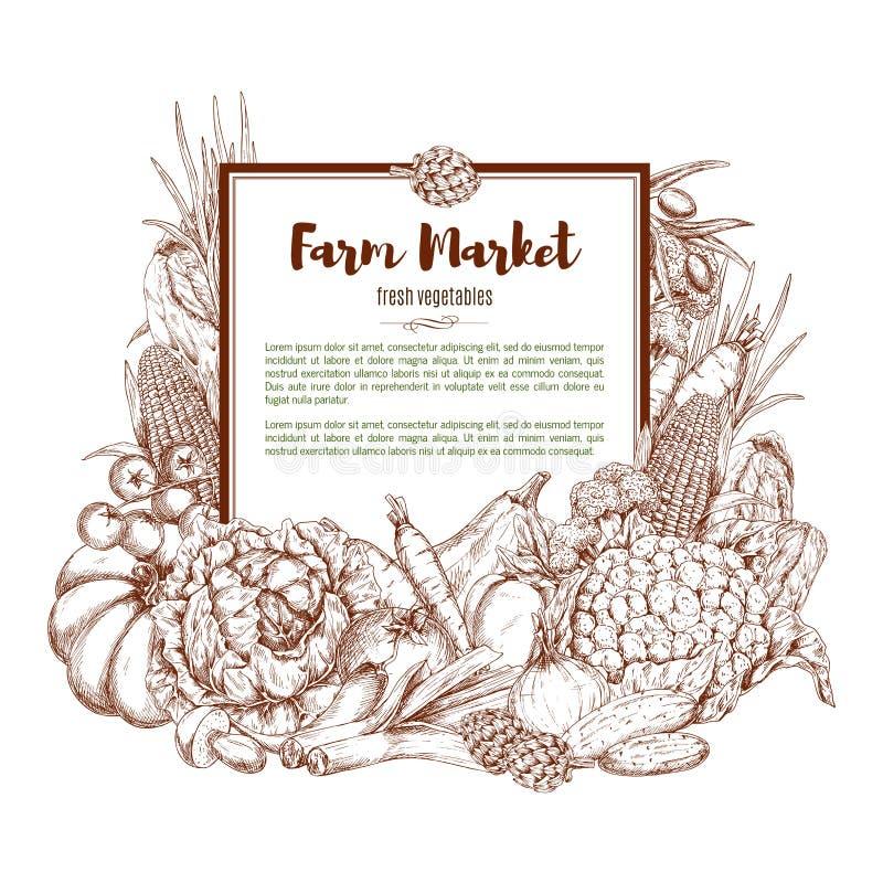 Cartel del bosquejo del vector de las verduras de la granja stock de ilustración