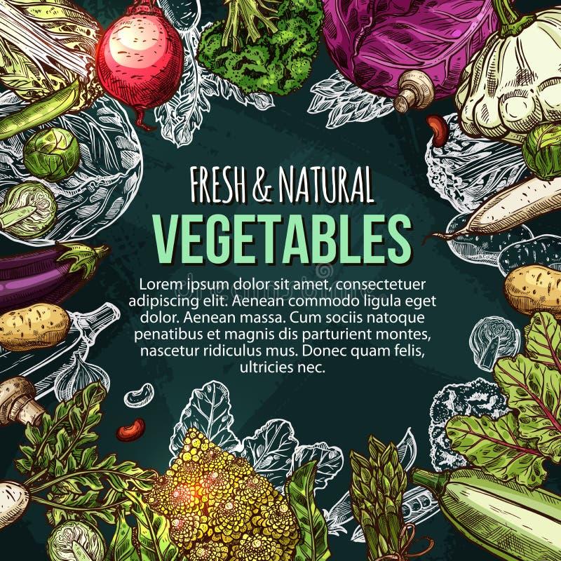 Cartel del bosquejo del vector de las verduras naturales de la granja libre illustration