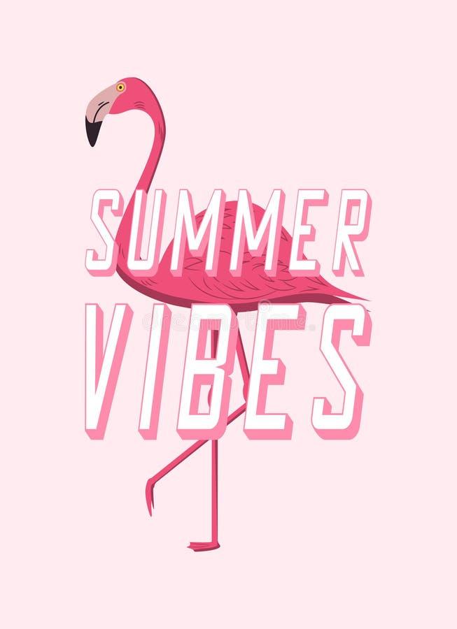 Cartel del diseño de los ambientes del verano con el flamenco rosado Bandera de la historieta por tiempo de verano Vector ilustración del vector