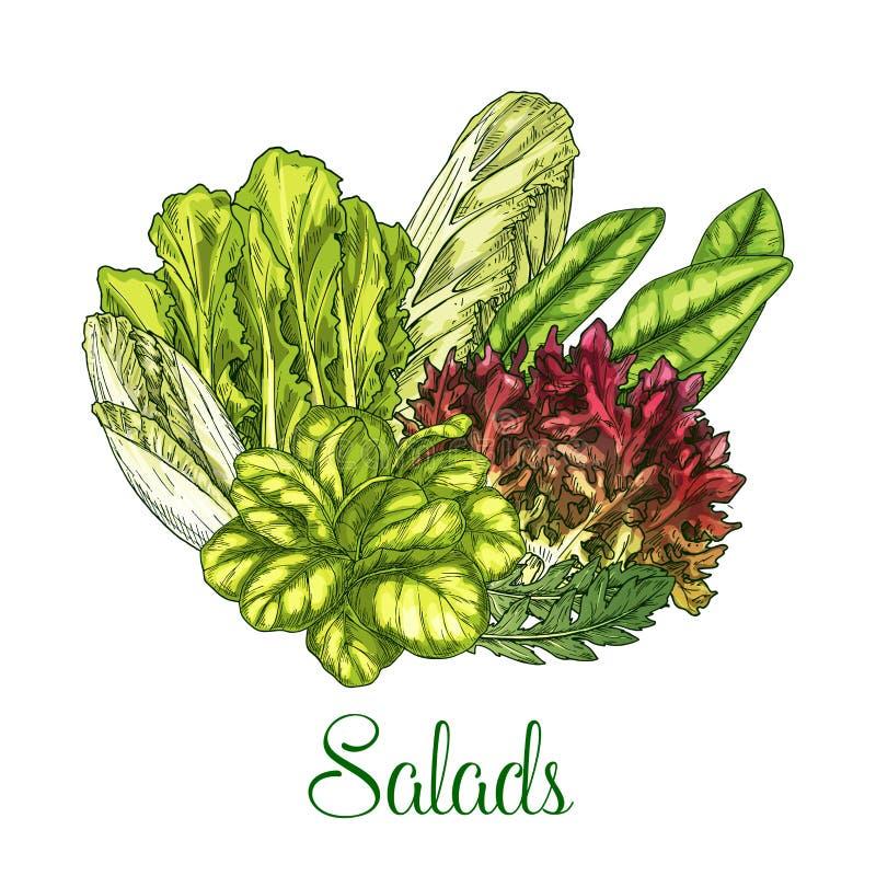 Cartel del vector de las ensaladas y de las verduras frondosas libre illustration