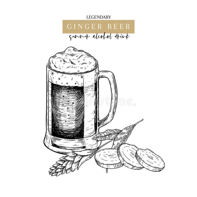 Cartel dibujado mano del pub de Oktoberfest Cerveza del ginger ale Vector el vidrio, la raíz slised del jengibre, la flor y las h stock de ilustración