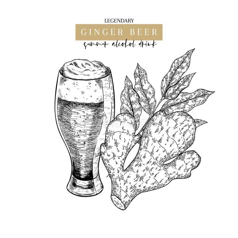 Cartel dibujado mano del pub de Oktoberfest Cerveza del ginger ale Vector el vidrio, la raíz slised del jengibre, y los aleros Be ilustración del vector