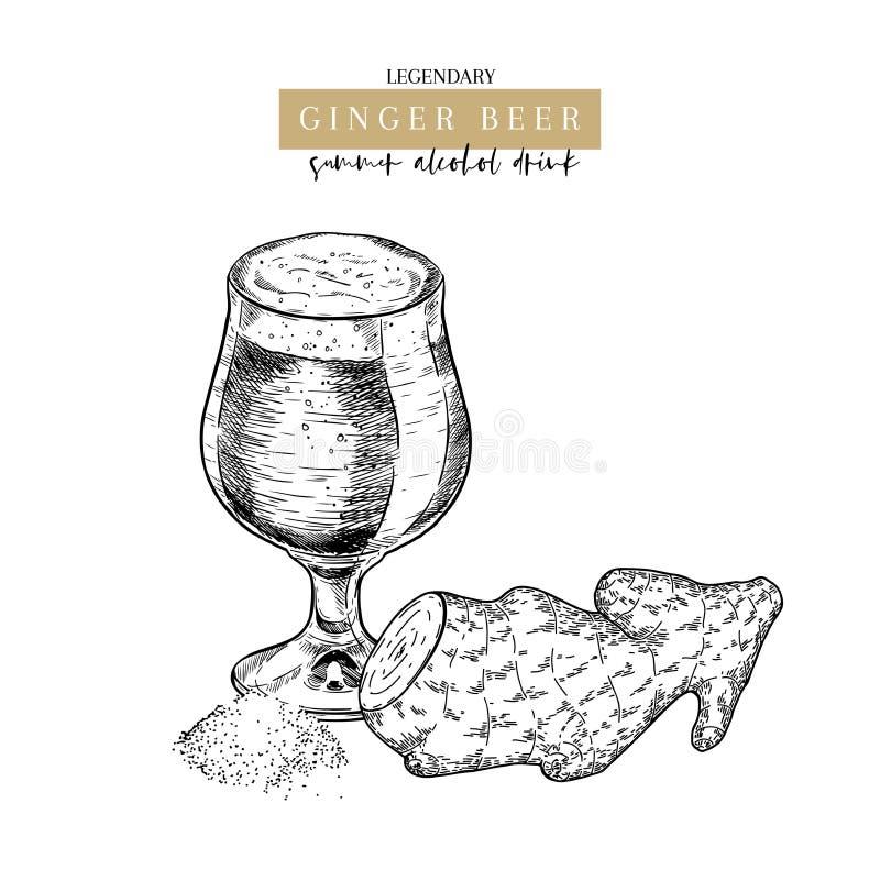 Cartel dibujado mano del pub de Oktoberfest Cerveza del ginger ale Vector la taza de cristal, raíz del jengibre, polvo secado Beb stock de ilustración