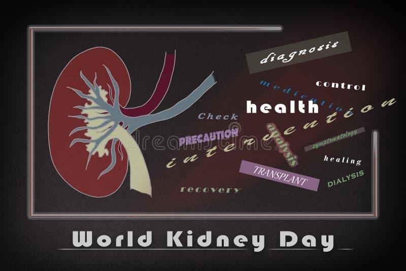Cartel informativo del día del riñón del mundo con palabras relativas stock de ilustración