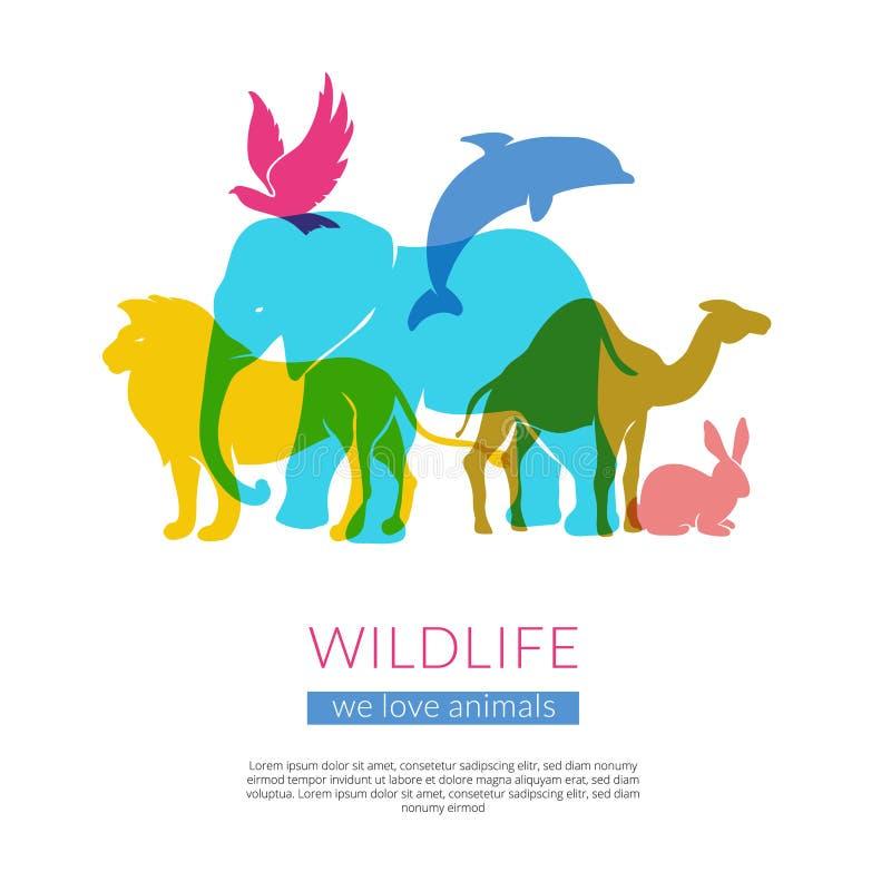 Cartel plano de la composición de las siluetas de los animales de la fauna stock de ilustración