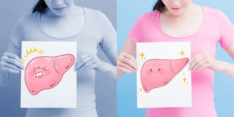 Cartelera del hígado de la salud de la toma de la mujer fotos de archivo libres de regalías