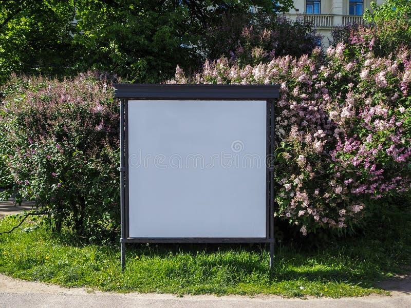 Cartelera en blanco para el anuncio al aire libre en la rama de la primavera del fondo floreciente de la lila foto de archivo