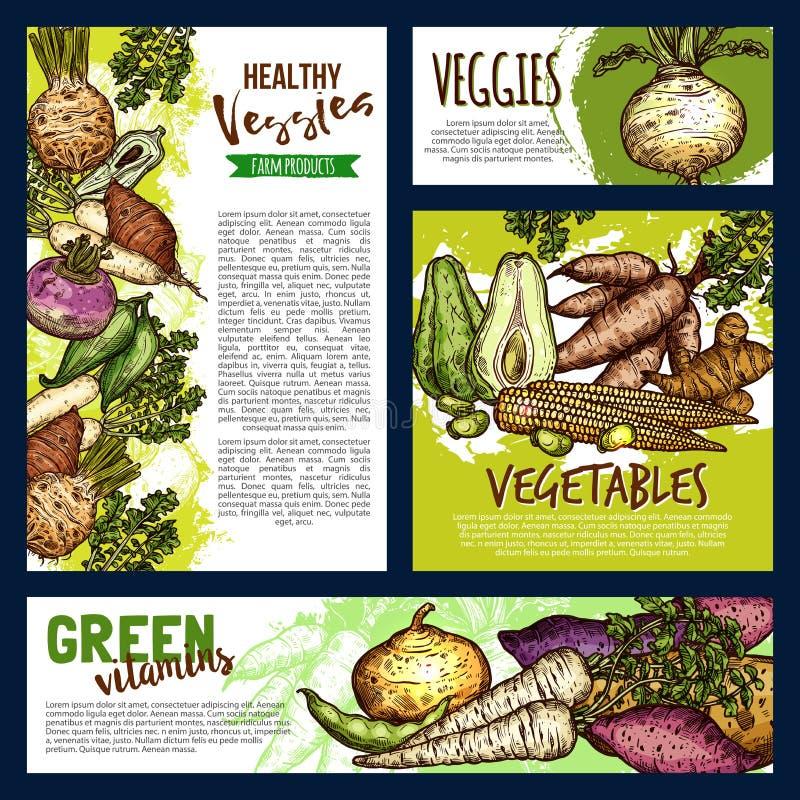 Carteles y banderas de las verduras y de los veggies de la granja libre illustration