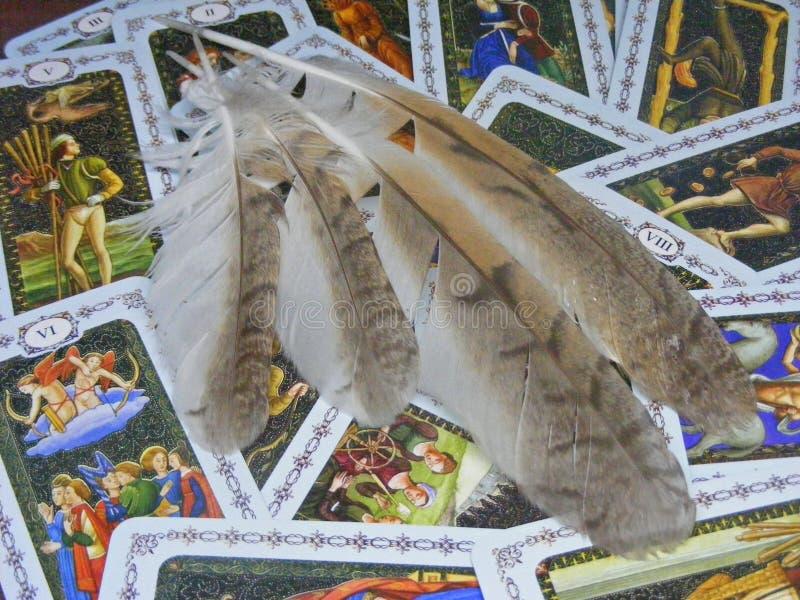 Cartes de tarot médiévales avec des plumes de hibou sauvage de forêt photo stock