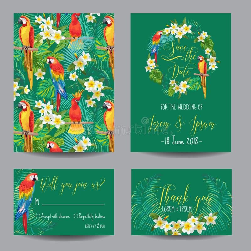 Cartes tropicales de fleurs et d'oiseaux illustration stock