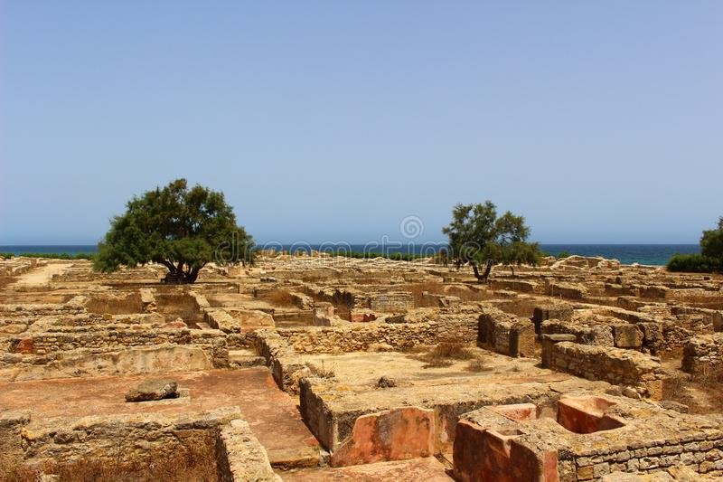 Carthaagse Ruïnes in GLB Bon, Tunesië royalty-vrije stock fotografie
